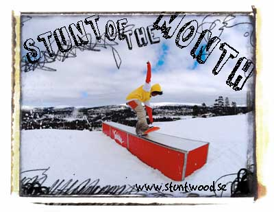 Stuntwood - stunt of the month